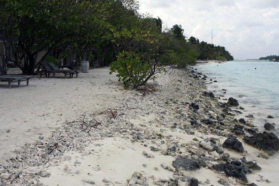 Paradise Island Resort & Spa: Plage des bungalows sud Est ! A éviter