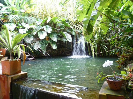 Tendacayou Ecolodge & Spa : Le spa...