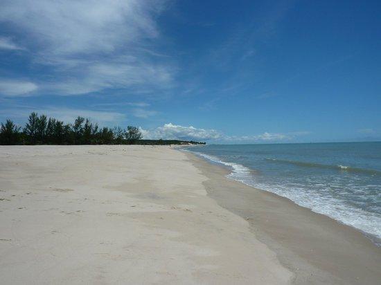 Antsanitia Resort: La plage