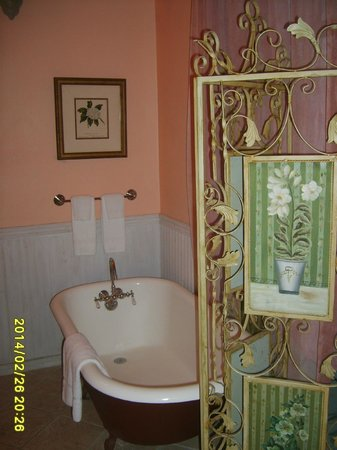 Creole Gardens Guesthouse Bed & Breakfast : bath
