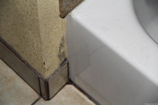 Comfort Inn: Mold near the bathroom tub