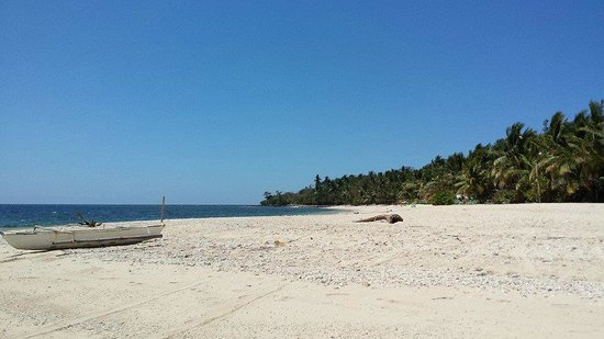 Pandan Island Resort: Beach
