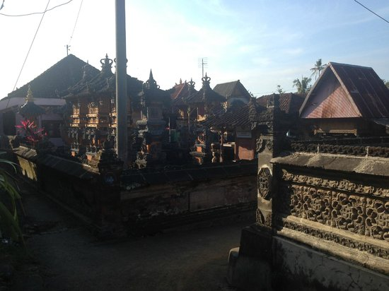 Bali Homestay : Village