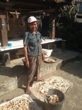 Bali Homestay: Cocoa beans