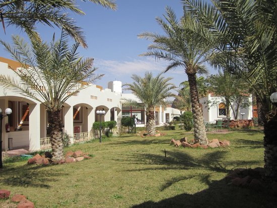 Al-Ula ARAC Resort: Garden