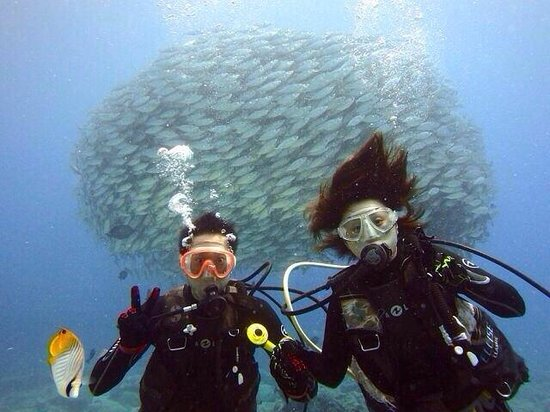 Grotto Snorkeling Sightseeing Day Tours - Sea Lovers: あじの群れ♪( ´▽`)