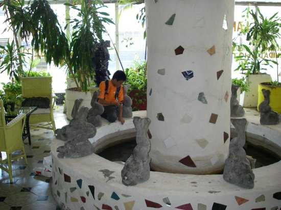Hotel Trinidad Galeria : Lobby fountain is home to lots of turtles