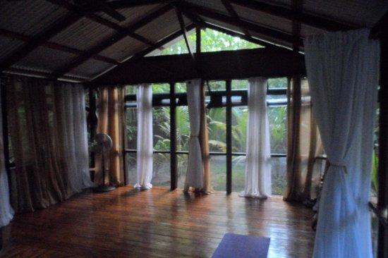 Firefly Yoga & Massage: Jungle yoga at it's best