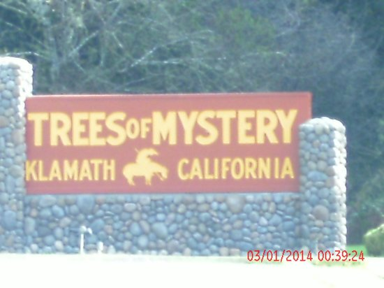 Trees of Mystery: out side