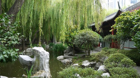 Chinese Friendship Gardens Sydney - Picture of Chinese Garden of ...