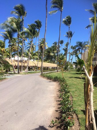 Grand Palladium Bavaro Suites Resort & Spa : Grounds on Bavaro side, walking to beach from suite