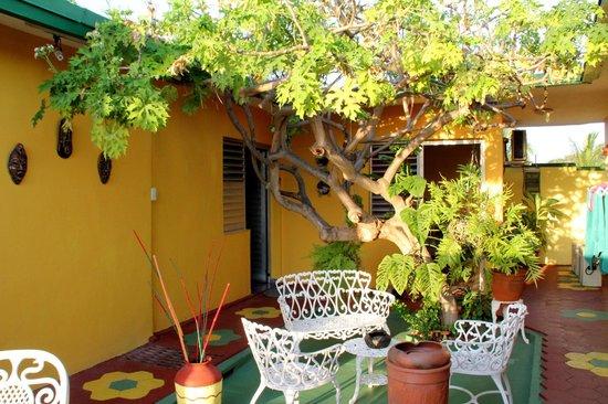Casa de Mary y Angel: Grön oas utanför rummen