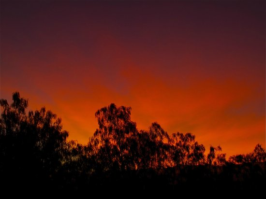 The Capaldi : Early morning sky