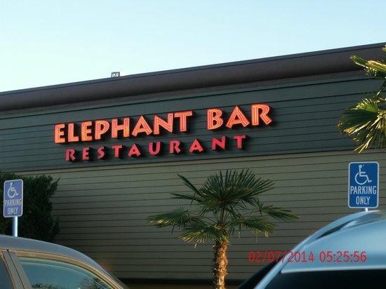Elephant Bar & Restaurant : outside