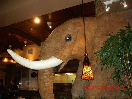 Elephant Bar & Restaurant: inside