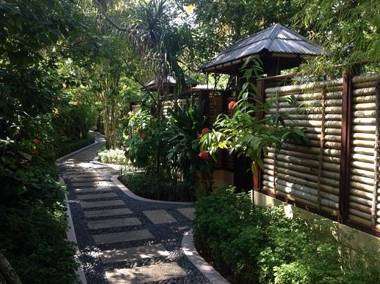 Sun Island Resort and Spa: SPA