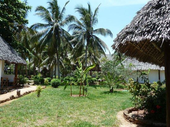 Kiwengwa Beach Resort: Hotel