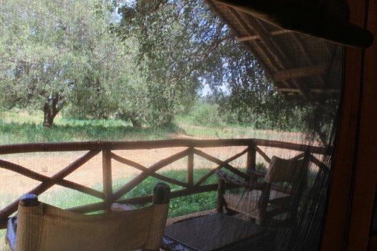 Ndololo Camp: camera