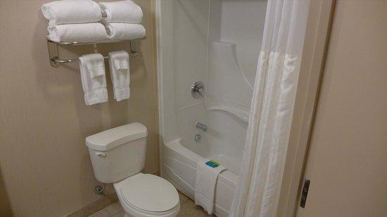 Radisson Hotel & Suites Fallsview: バス・ルーム