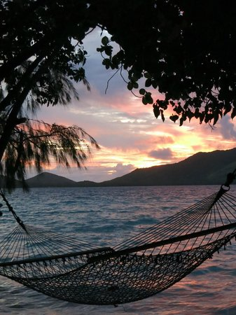 Turtle Island : Relaxation at it's Finest!