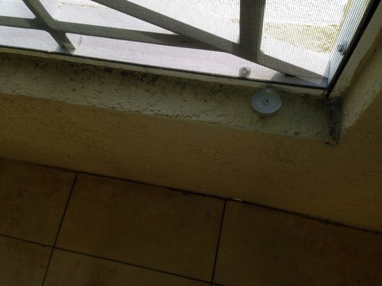 The Westin Cape Coral Resort At Marina Village: Someone else's used candles left on the balcony