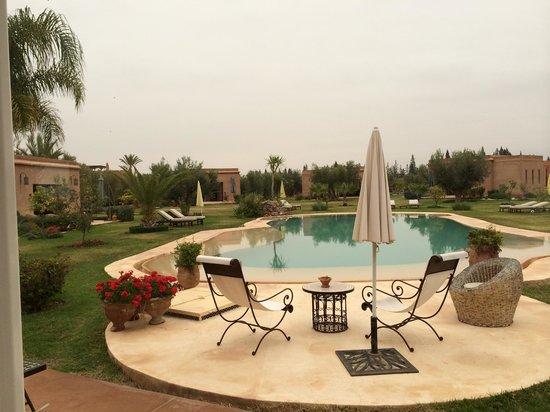 Oasis Jena: piscine.....un peu froide en Février....