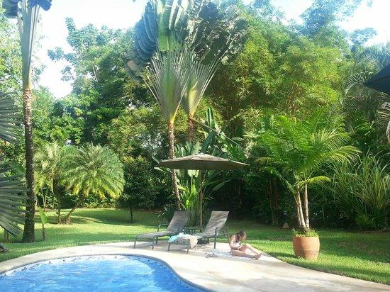 Playa Negra Guesthouse: Beautiful pool and gardens