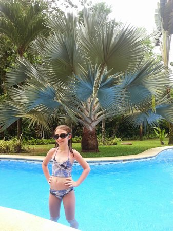 Playa Negra Guesthouse: The blue palm poolside