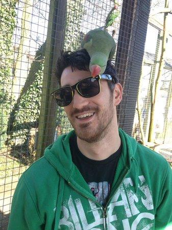Tropical Birdland: Me with a bird on my head!