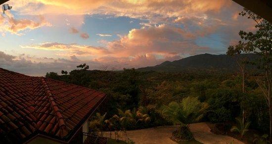 El Castillo Hotel : View of Jungle behind the hotel