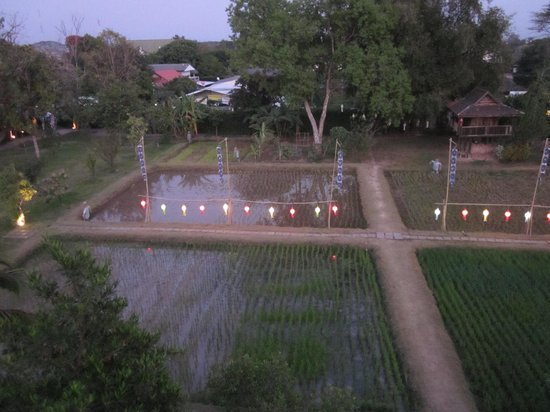 Siripanna Villa Resort and Spa Chiang Mai: View from dinner on the tower