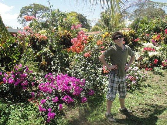Isla Ometepe: Charco Verde
