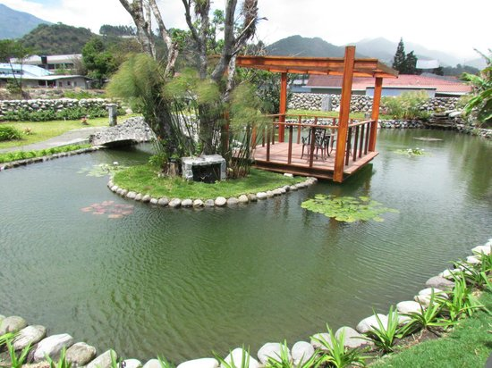 El Oasis Hotel & Restaurant : Water garden and pond at hotel