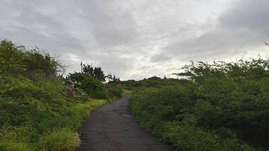 Makapuu Lighthouse Trail: Heading up the trail