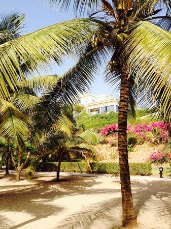 Les Alizes Beach Resort: Vue de rêve