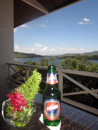 Gamboa Rainforest Resort: view from the monkey bar