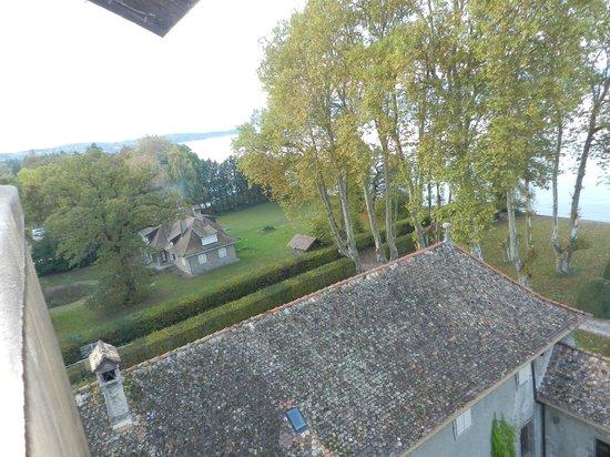 Chateau de Coudree: vu du donjon