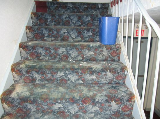 Airport Inn : stairway with broken plaster from ceiling and bucket for water leak