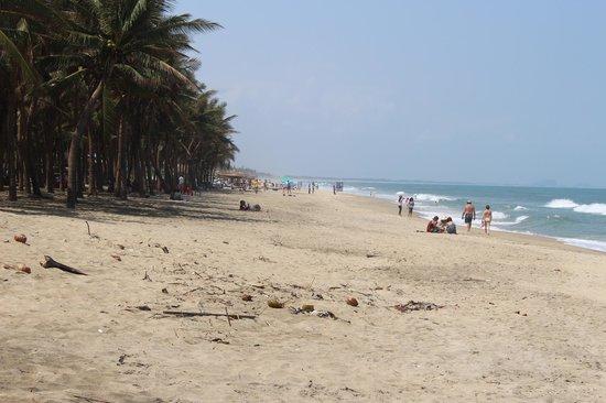 ベッドの上からでもこの景色が眺められます picture of hoi an beach