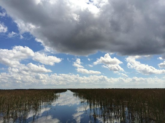 Fort Lauderdale Airboat Adventure: River of Grass