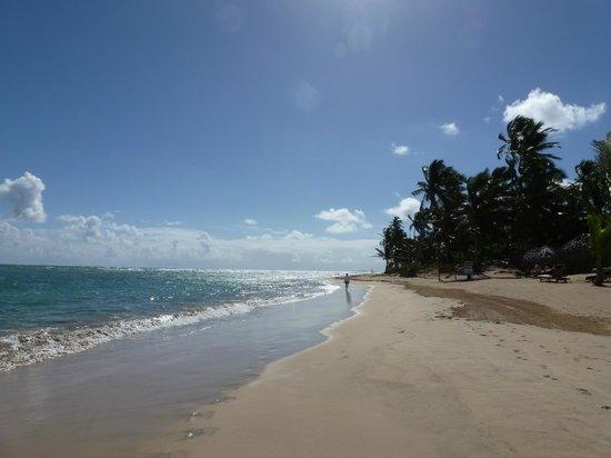 Zoetry Agua Punta Cana : Gorgeous Beach
