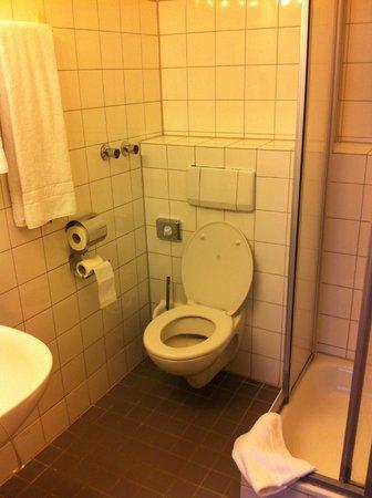 Hotel Larat: Baño