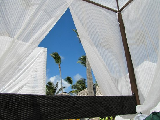Ocean Blue Sand Canopy Bed On The Beach