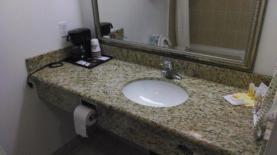 Days Inn & Suites Anaheim Resort : Sink