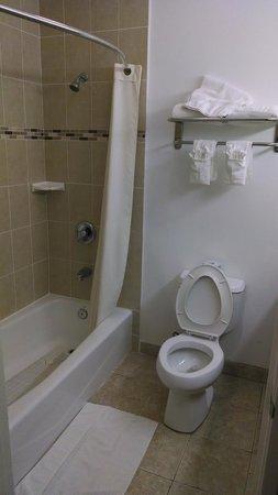 Days Inn & Suites Anaheim Resort : Shower