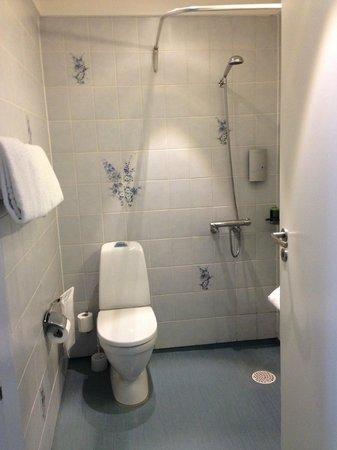 BEST WESTERN Hotel Hebron: Terrible bathroom, scary plastic blue floor, no shower separation.