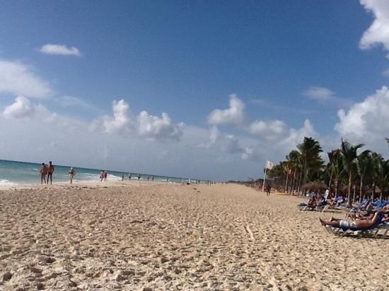 Viva Wyndham Maya : Playa