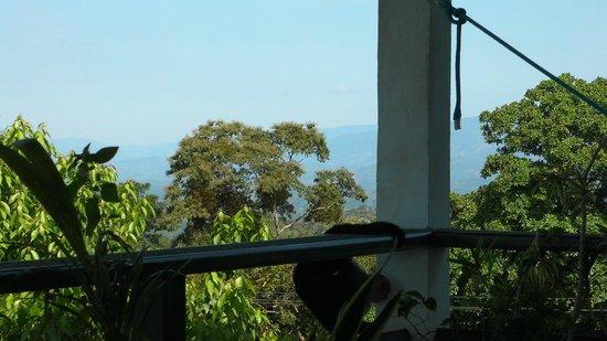 Villa Azul : from de patio