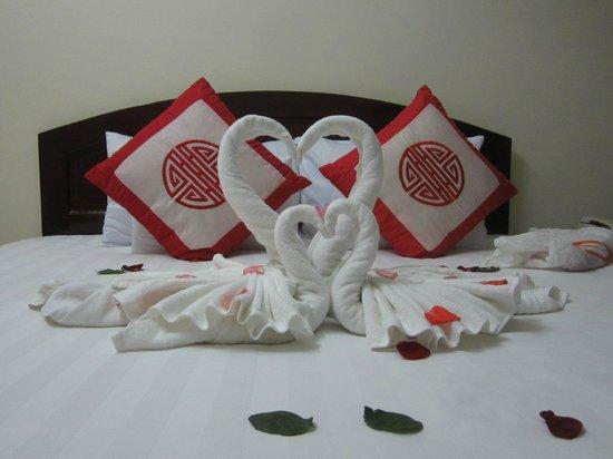 Hai Au Boutique hotel and spa: Встреча нового гостя лебедями)