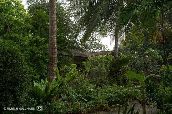 Sunset Beach Resort : Rain
